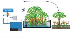 生活污水处理设备工程・垂直流人工湿地